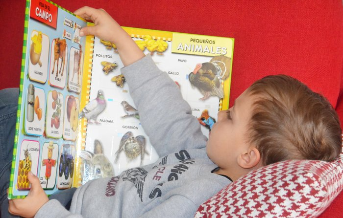 Little boy learning a second language from a book.